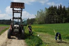 Feldarbeit - grasen